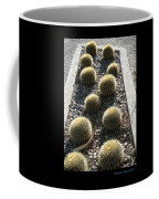 Bed Of Barrel Cacti  Coffee Mug