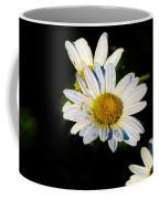 Bed Of Daisy's For Daisy Coffee Mug