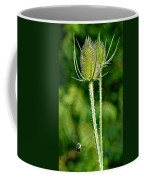 Bee And Teasel Coffee Mug