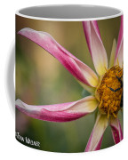Bee Enjoying A Willie Willie Dahlia Coffee Mug