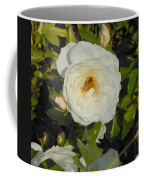 Bee In A White Rose Coffee Mug by Kay Gilley