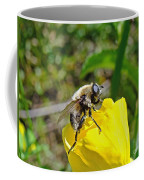 Bee Mimic On Primrose Coffee Mug