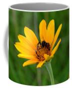Bee On A Smooth Oxeye Coffee Mug