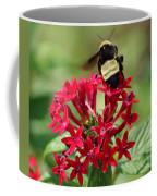 Bee On Flower Cluster Coffee Mug