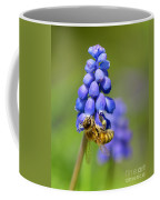 Bee On Grape Hyacinth Coffee Mug