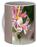Bee On Pink Honeysuckle Coffee Mug