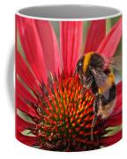Bee On Red Coneflower 2 Coffee Mug