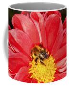 Bee On Red Dahlia Coffee Mug