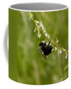 Bee On Wildflower Coffee Mug
