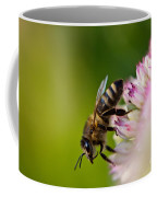 Bee Sitting On A Flower Coffee Mug