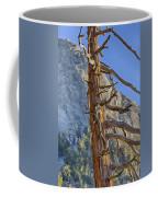 Beetle Barren Pine Coffee Mug