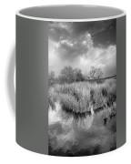 Before The Big Storm Mono Coffee Mug