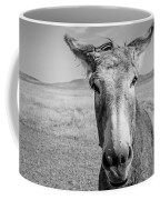Begging Burro Coffee Mug