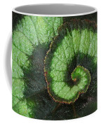 Begonia Leaf 2 Coffee Mug