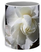 Begonia Named Nonstop Apple Blossom Coffee Mug