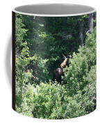 Behind The Shrubs Coffee Mug