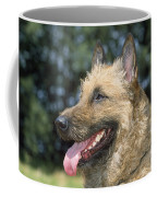 Belgian Laekenois Dog Coffee Mug