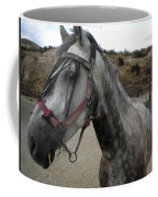 Bella On The Ranch Almanzora Mountain Spain  Coffee Mug