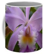 Belle Isle Orchid Coffee Mug