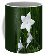 Bellflower - Campanula Carpatica Coffee Mug