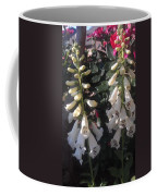 Bells Of Beauty Coffee Mug