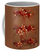 Belly Dancing... Coffee Mug