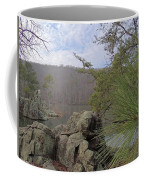 Below Badin Dam Coffee Mug