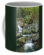 Below Mina Sauk Falls 1 Coffee Mug
