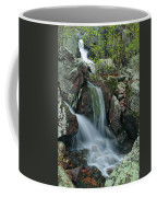 Below Mina Sauk Falls 4 On Taum Sauk Mountain Coffee Mug