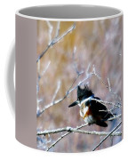 Belted Kingfisher  Coffee Mug