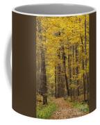 Bench In Fall Color Coffee Mug