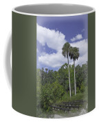 Benched At Rainbow Springs Campground Coffee Mug