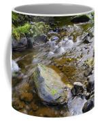 Bending Between The Rocks Coffee Mug
