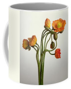 Bendy Poppies Coffee Mug by Norman Hollands