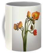 Bendy Poppies Coffee Mug