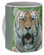 Bengal Coffee Mug