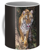 Bengal Tiger By Tree Endangered Species Wildlife Rescue Coffee Mug