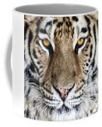 Bengal Tiger Eyes Coffee Mug