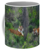 Bengal Tigers On Grassy Hillside Endangered Species Wildlife Rescue Coffee Mug