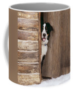 Bernese Mountain Dog At Log Cabin Door Coffee Mug