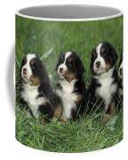 Bernese Mountain Puppies Coffee Mug