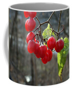 Berries In Winter Coffee Mug