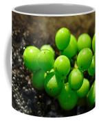 Berries On Water Coffee Mug
