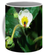 #berry Coffee Mug
