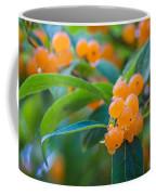 Berrylicious Coffee Mug