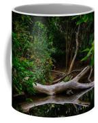 Bidwell Park Scene Coffee Mug
