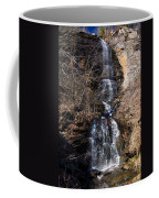 Big Bradley Falls 1 Coffee Mug