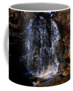 Big Bradley Falls 5 Coffee Mug