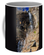 Big Bradley Falls 6 Coffee Mug