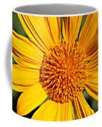 Big Bright Bold Coffee Mug